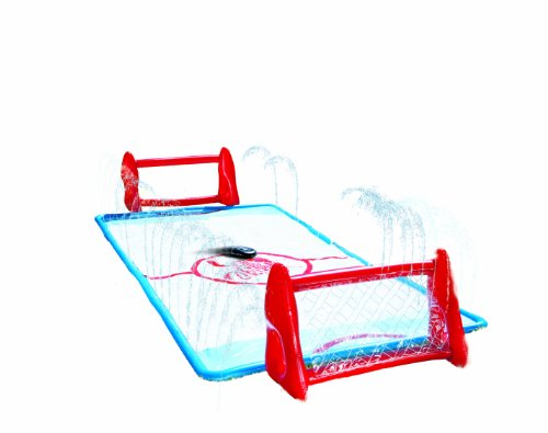 Great Features Of Wham-O Water Knee Hockey Rink