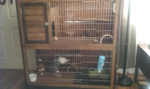 Super pet rabbit hutch 2 story 48 inch wide for Super pet hutch