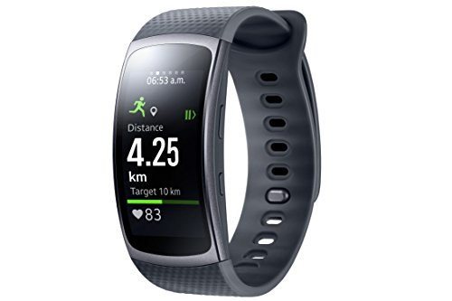 Samsung Gear Fit II - Smartwatch mit Herzfrequenzmessung und Notifications Dark Gray (L)
