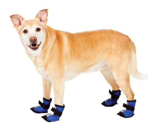 Fashion Pet Blue Essential Dog Boots Small