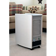 Blueair ECO10 Energy-Star HEPASilent Air Purifier