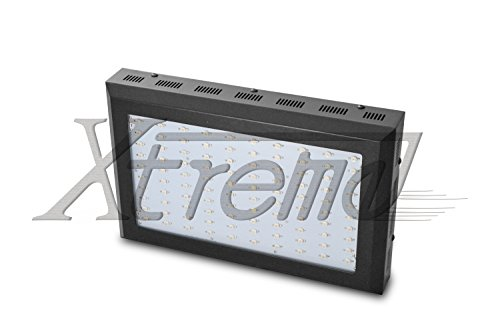 Xtreme Work® Full Spectrum 300W (100*3W) Led Grow Light For Indoor Plant Growing Plants And Garden Greenhouse With Ir