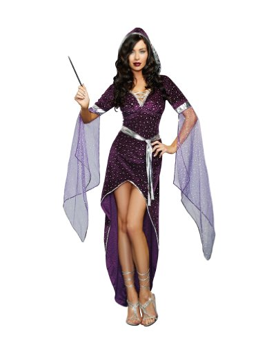 Dreamgirl Women's Sexy Wizard Costume Sorcery and Seduction