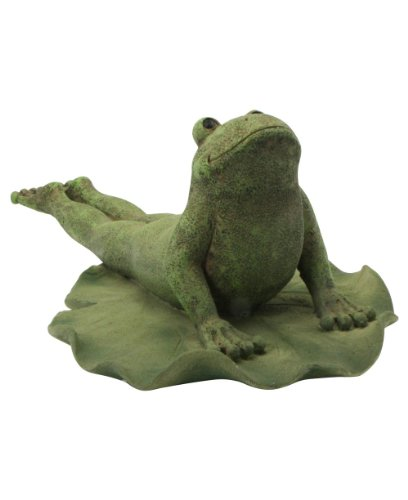 garden yoga frog