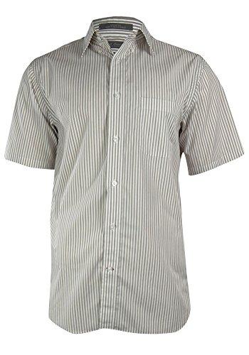 Daniel Cremieux Signature Collection Egyptian Cotton Stripe Shirt (XL, Brown)