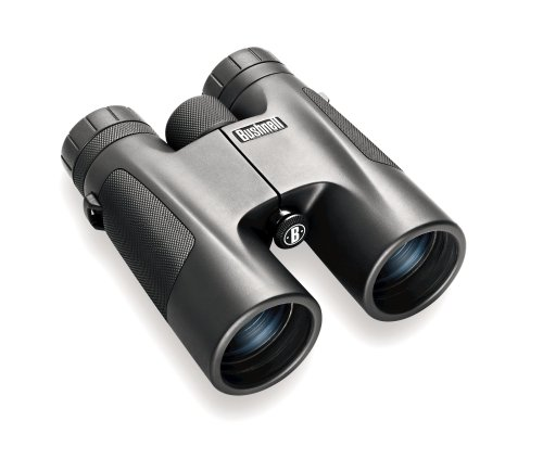 Bushnell 10 x 42 Powerview Roof Prism Binocular