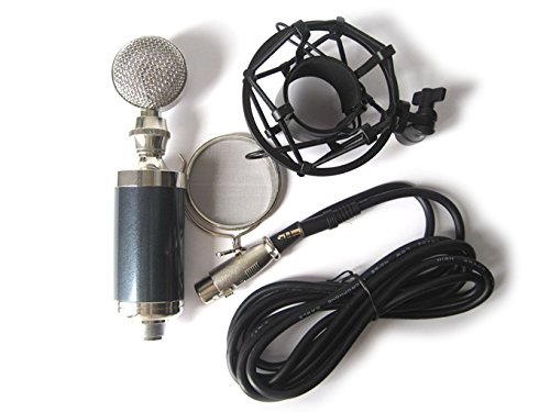 Baby Bottle Microphone front-1060535