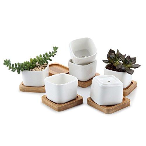 macetas-de-ceramica-con-bandeja-de-madera-de-bambu-color-azul-ceramica-no1-shape-no1