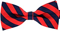 Tok Tok Designs® Handmade Boy's Bow Tie - BK26 (Silky Navy & Red)