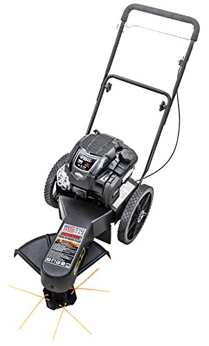 Swisher-STS67522BS-22-Trim-N-Mow-Plus-String-Trimmer
