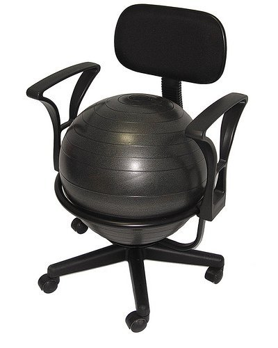 Why Should You Buy Low-Back Deluxe Ball Chair