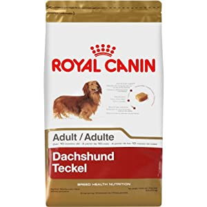 Royal Canin Dry Dog Food, Dachshund Formula, 10-Pound Bag