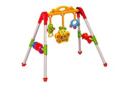 Sunshine Battery Operated Multi-function Baby Activity Centre with Lights and Music (Non-toxic)