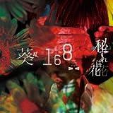 BURN-葵-168-