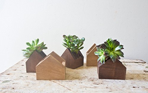 Tiny House Shaped Plant Box - Walnut Natural Wood Pot Succulent Planter Wooden Planters Centerpiece Handmade Weddings Home Is Where The Heart Is