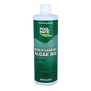 Pool Mate 1-2160 Non-Foaming Algae Rid Swimming Pool Algaecide, 1-Quart