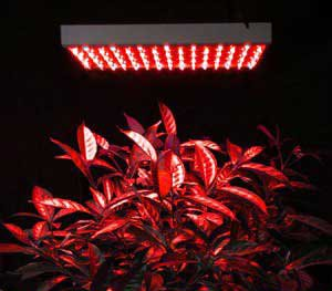 13.5W Led Plant Grow Light Hydroponic 225 Red Panel