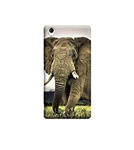 EPICCASE Premium Printed Back Case Cover With Full protection For Sony Xperia M4 (Designer Case)