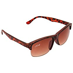 HERDY Brown Colored Wayfarer