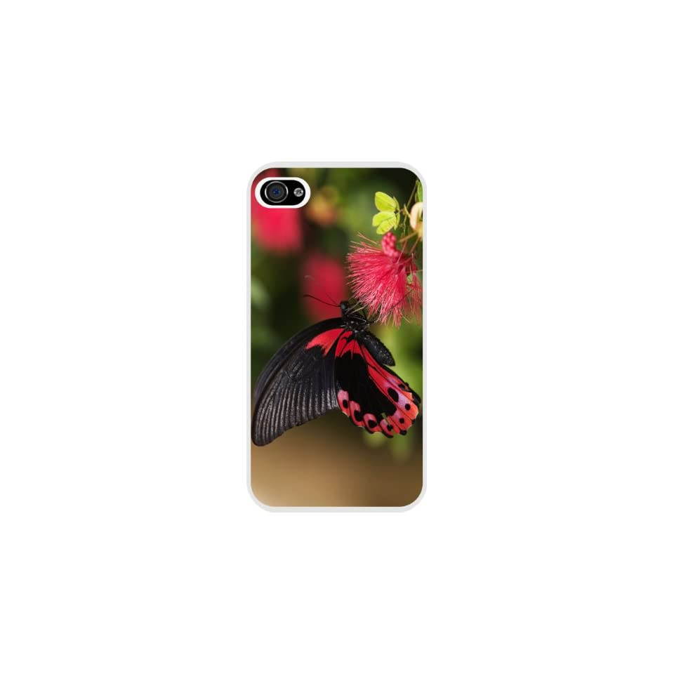Rikki KnightTM Silhouette Tree on Tropical Rainbow Background White Case Cover for Apple iPhone 4 & 4s Universal Verizon   Sprint   AT&T Unisex (New 2013 case design)