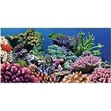 Aquatic Creations Static Cling Aquarium Background, 36 by 18-Inch, Coral