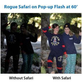 Rogue Safari example image taken at 60
