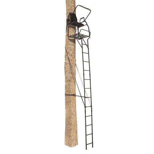 Find Cheap Big Game Celtic Ladderstand LS0200