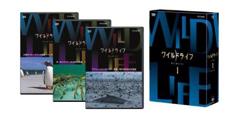 ワイルドライフ DVD-BOXI