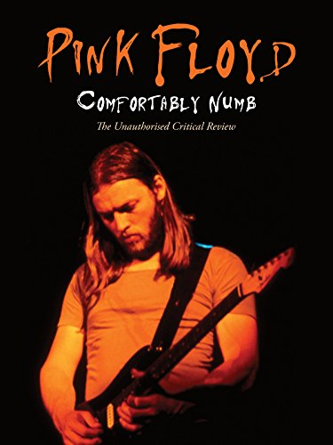 Pink Floyd - Comfortably Numb on Amazon Prime Video UK