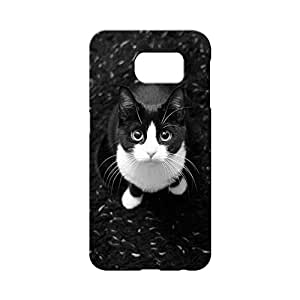 BLUEDIO Designer 3D Printed Back case cover for Samsung Galaxy S6 Edge Plus - G1647