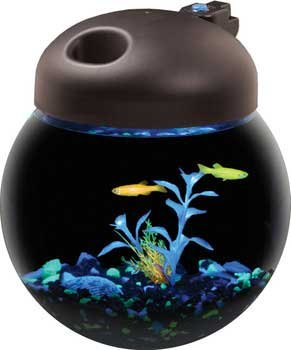 One Gallon Glow Fish Globe Bowl Aquarium with Full Hood &12 LED Glofish Lights