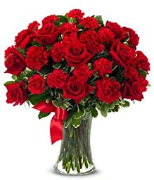 From You Flowers - Red Roses + Red Carnations - Mixed Bouquet (Free Vase Included) Measures 17\