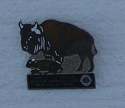 Twin Valley Minnesota Lions Club Limited Edition Enamel Pin