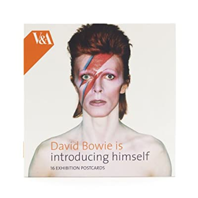 David Bowie is introducing himself Postcard Wallet (x16)||EVAEX