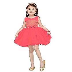 Aarika Girl's Self Design Net Fabric Party Wear Frock (FK-1000-GAJRI_28_7-8 Years)