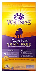 Wellness Complete Health Grain Free Chicken Natural Dry Dog Food, 24-Pound Bag