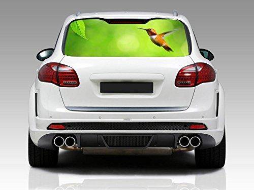 HUMMINGBIRD Car Rear Window Graphic Decal Sticker Truck SUV Van Birds Animal 037, Small (Hummingbird 35 compare prices)