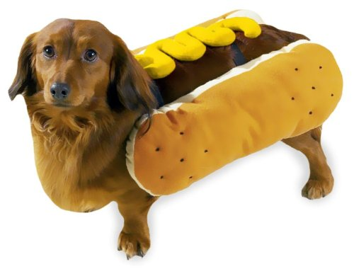 Casual Canine Polyester Hot Diggity Dog Costume, Small, Mustard