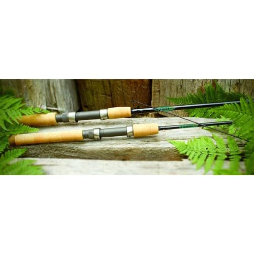 Amazon.com : St. Croix Premier Series Spinning 2 Piece Rod (6', Medium