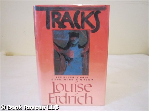 american horse louise erdrich essays Narrative about native american life in interviews, louise erdrich mentions how she the miracles at little no horse this essay i will consider both.
