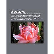 Sciaenidae: Argyrosomus, Atrobucca, Bairdiella, Cynoscion, Johnius, Larimus, Menticirrhus, Micropogonias, Nibea...