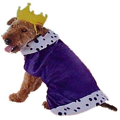 Dog King Costume Royal Purple Pet Crown Medium