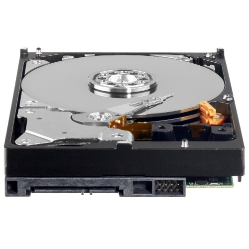 Western Digital 1 TB Caviar Green SATA Intellipower 64 MB Cache Bulk/OEM Desktop Hard Drive WD10EARS