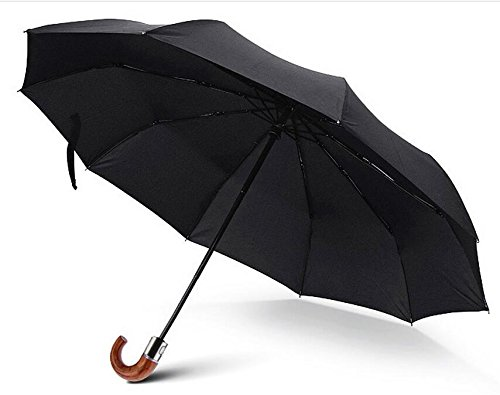 WAYCOM Folding Anti UV Travel Umbrella-Super-Windproof Compact Parasol-Geschäfts Auto-Regenschirm für Man-10 Metallrippen (Black)