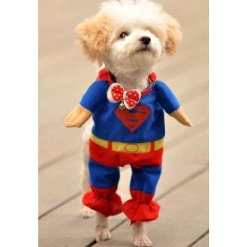 【全5サイズ】 ドッグウェア トレーナー 犬服 コスチューム ワンちゃんがスーパーマンに変身 (Lサイズ(首回り29?35cm 身長約32cm))