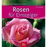 Rosen für Einsteiger: Robuste und pflegeleichte Sorten