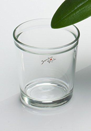 vaso-da-fiori-orchidea-conico-trasparente-di-sandra-rich