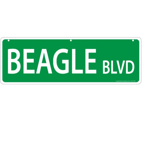 Imagine This Beagle Street Sign