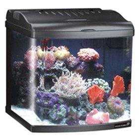 Jbj 12 Gallon Nano Cube Deluxe Aquarium With (2) Nite-Vu Led Moonlights