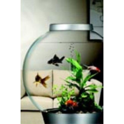 Biorb Fish Tank 60 Aquarium Tropical